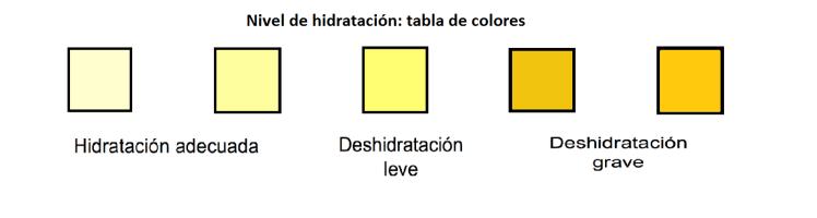 tabla-hidratacion-orina-lunes